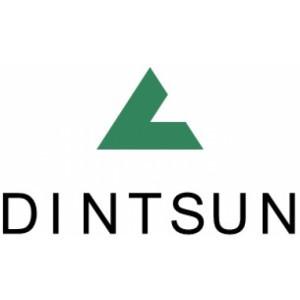Logo Công ty TNHH Din Sen Việt Nam
