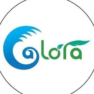 Logo Công Ty TNHH Alora