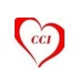 Logo Công ty TNHH CCI Việt Nam