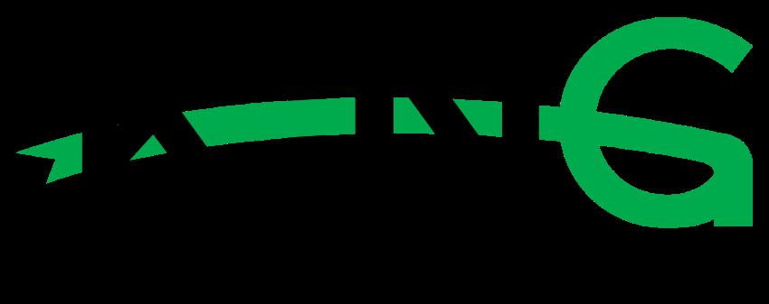Logo Công Ty TNHH King Việt Nam