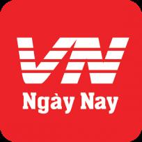 Logo Công ty TNHH Công Nghệ Mạng Thông Tin Việt Nam (VN Ngày Nay)