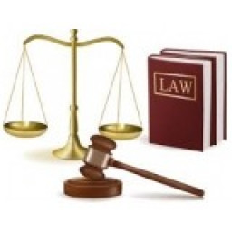 Logo Văn phòng luật sư Đa Kao