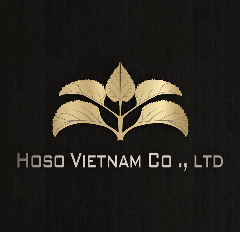 Logo Công Ty TNHH Hoso Việt Nam