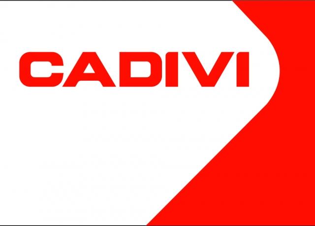 Logo Công ty Cổ phần Dây cáp điện Việt Nam (CADIVI)