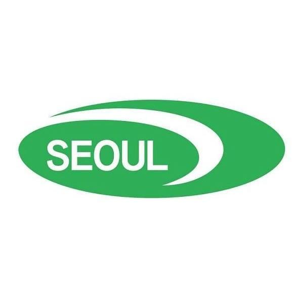 Logo Công ty TNHH Seoul Semiconductor Vina