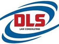 Logo Công ty CP Tư vấn DLS Việt Nam