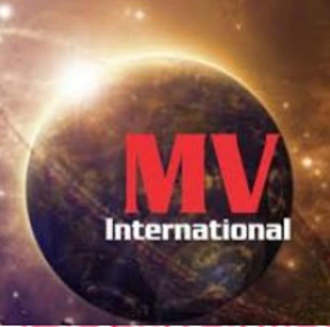 Logo Công ty TNHH quốc tế Mavi