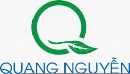 Logo Công ty TNHH Đầu Tư Thương Mại Và Dịch Vụ Quang Nguyễn