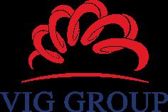 Logo Công ty Cổ phần VIG Đầu Tư