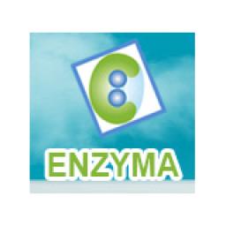 Logo Công ty TNHH Enzyma